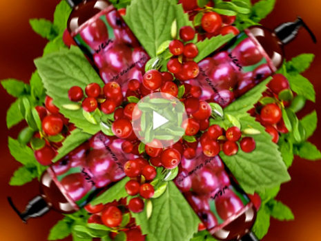 'Winter Cranberry Mint' Seasonal Campaign